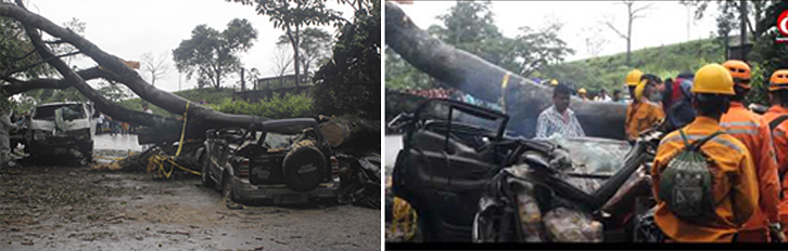 Figure 3 Tree collapse accident took the life of a civilian from Cucuta city in Sardinata Roadway on 23rd April_2019