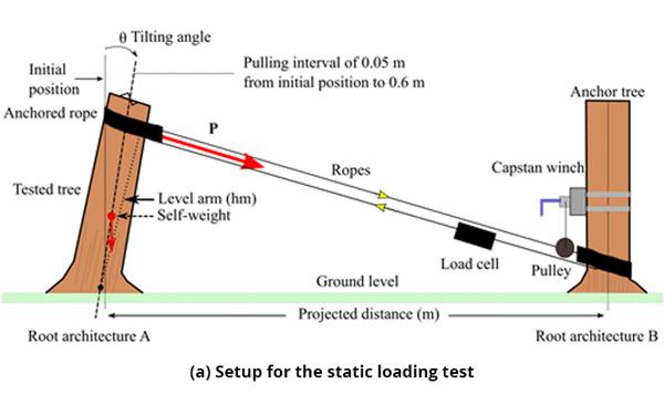 Figure 5 (a) Setup for the static loading test